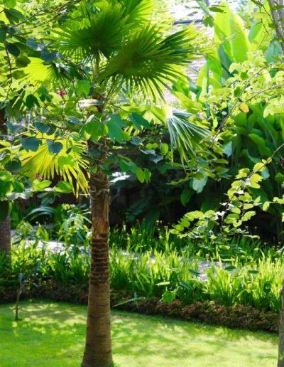 1-4-nagshampa-garden-1