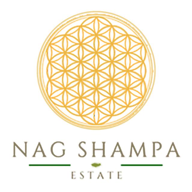 Villa Nag Shampa Bali